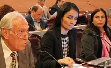 La derrota contra el PRO en Diputados avivó la interna radical