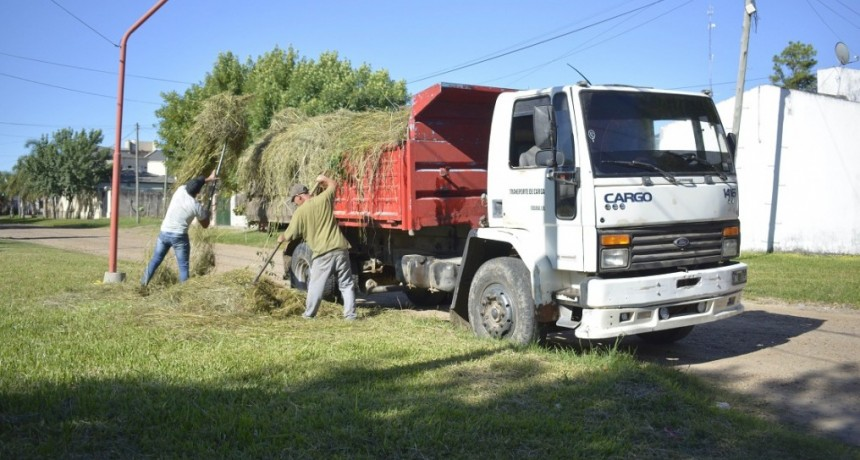 Tareas  de mantenimiento en Barrios de la Ciudad