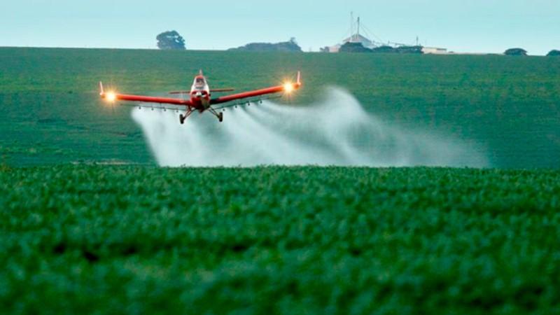 Fumigaciones: se denegó recurso extraordinario a amparo del Foro Ecologista