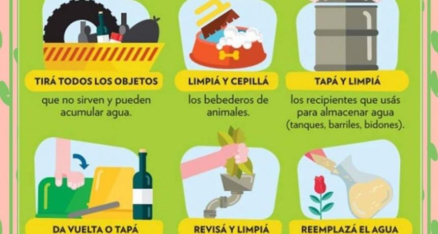 Campaña municipal de Descacharrización