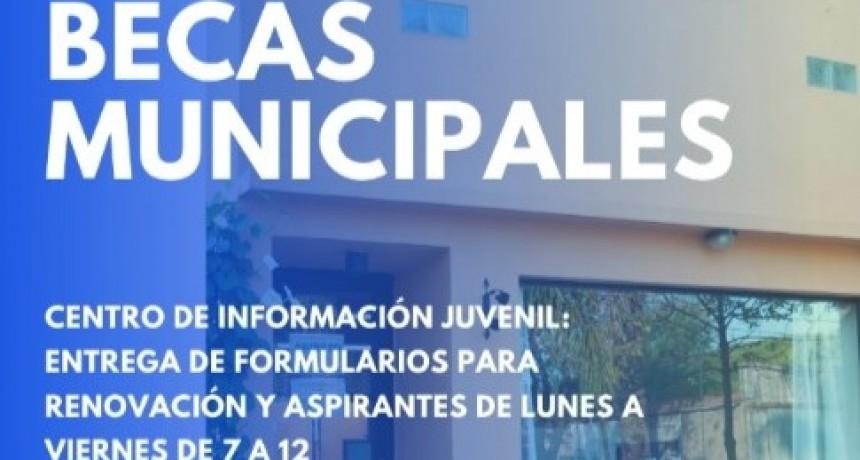 Abiertos los períodos de Renovación y Aspiración a Becas Estudiantiles Municipales.
