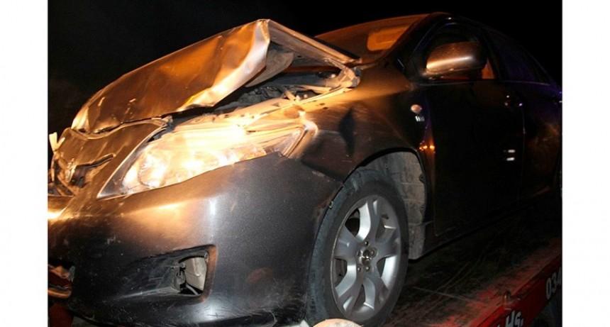 Camino a Federal : Conductor embistió con su auto a tres terneros que estaban sobre la calzada