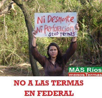 Proyecto Termal de Federal, opinión de una ambientalista independiente