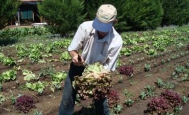 Acuerdo de cooperación entre el gobierno nacional y agricultores familiares