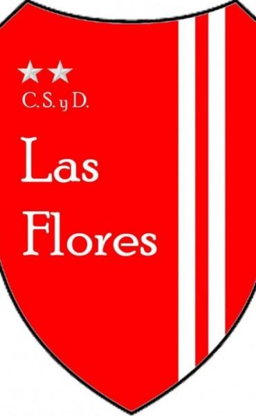 El uso de la cancha del Club Las Flores es tema de debate en los medios