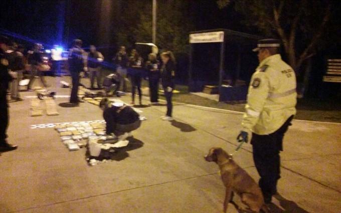 Secuestran Droga en control Policial  de San Jaime