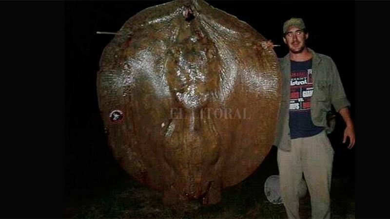 Tres pescadores capturaron una raya de 150 kilos