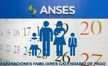 Asignaciones Familiares 2017. Qué hay que hacer para cobrar