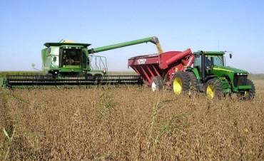 El empleo crece en distritos ligados al agro, pero no en el resto del país