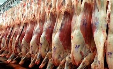 ¿Quienes tienen la responsabilidad de controlar los alimentos que consumimos?