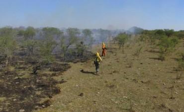 Intensos trabajos para Bomberos de Federal y sofocar incendios forestales