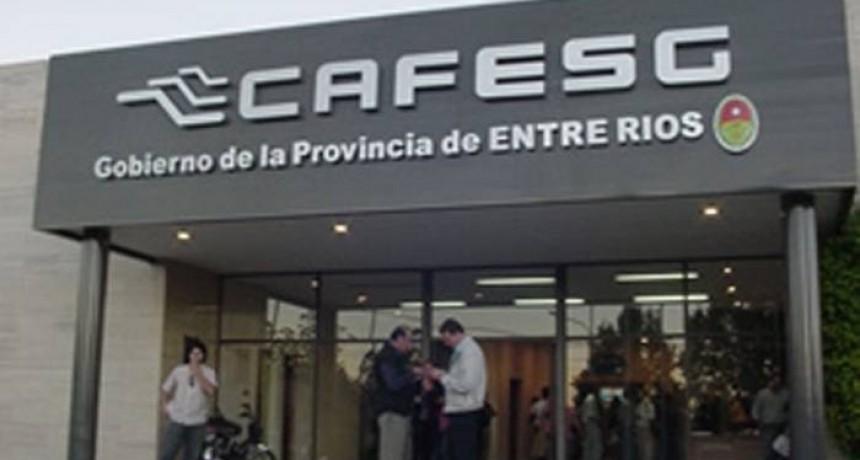 En abril Cafesg abre los sobres para obras en Federal
