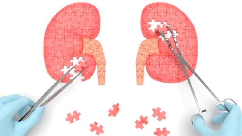 Enfermedades renales en niños y adultos: importancia de la detección temprana