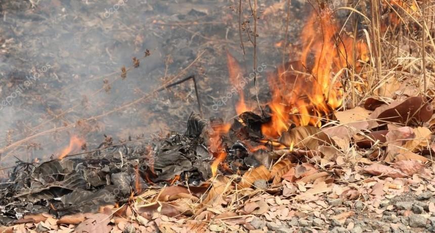 Pasto y hojas secas: Cuidado con su quema
