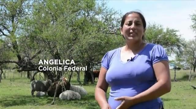 Ejecutan proyectos especiales del Pro - Huerta en Federal y Concordia