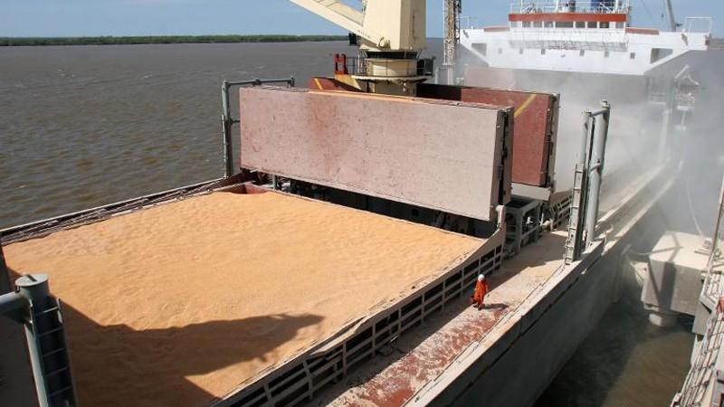 Reabrieron el registro de venta de granos al exterior