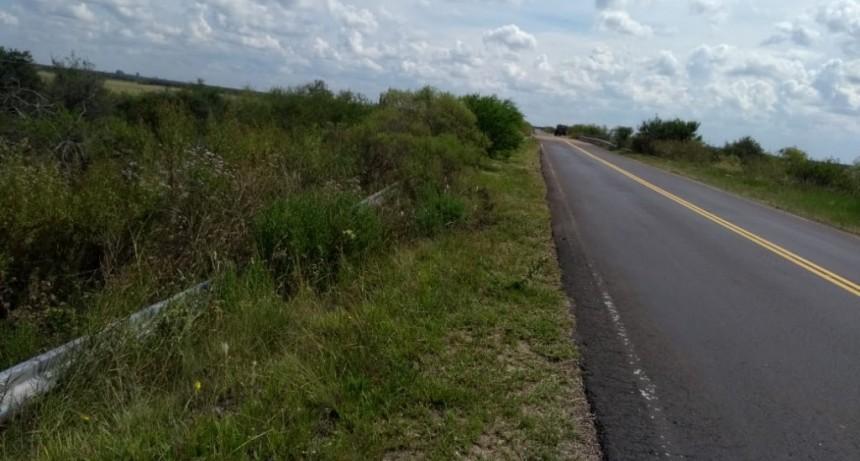 Despiste de un camión en la Ruta Provincial N° 22.