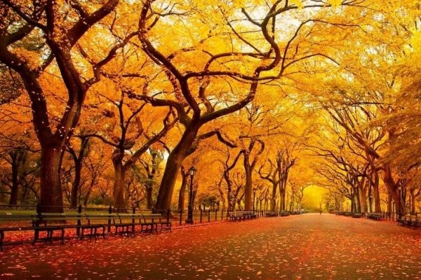 Comienza el otoño