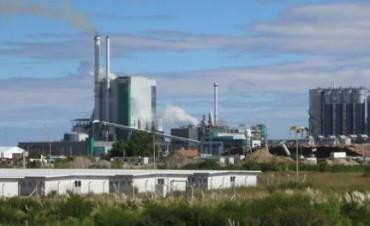 Uruguay: Confirman el lugar de la construcción de nueva pastera e inaugura la segunda planta