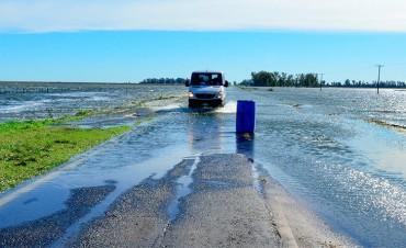 Temen pérdidas de u$s 5000 millones de la producción sojera por inundaciones