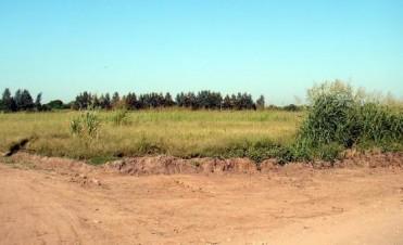 Como marcha la venta de terrenos municipales ?