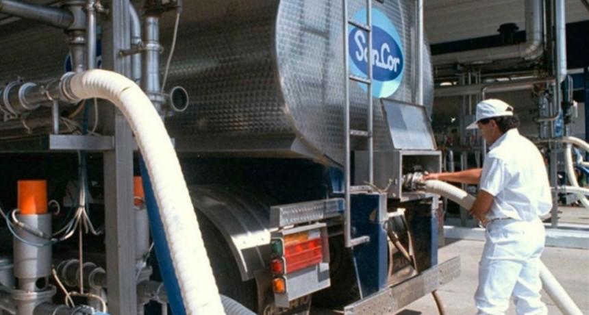 La puja por el precio de la leche: qué cambiará con la nueva SanCor