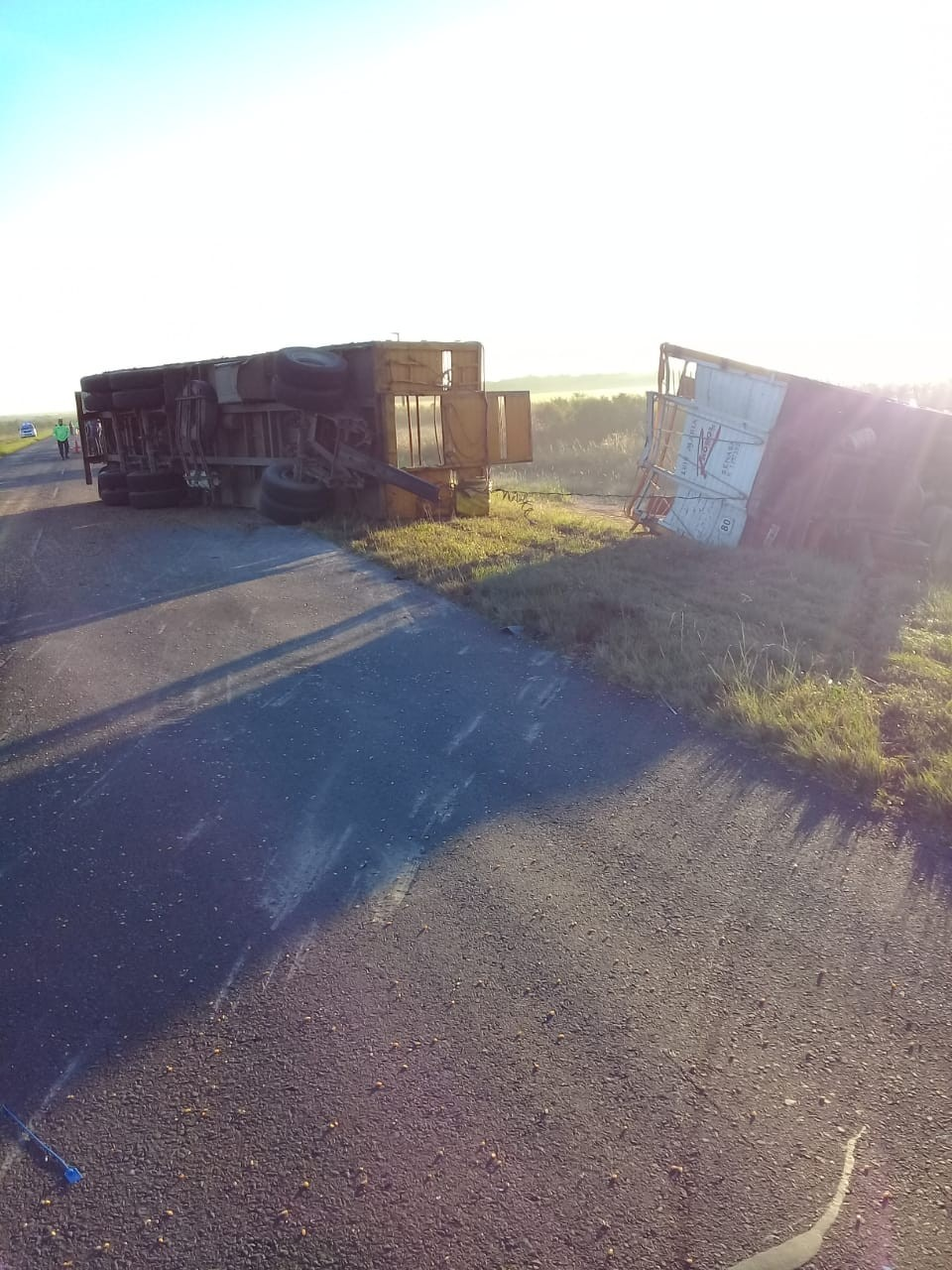 Tras chocar a otro camión , vuelco en Ruta Nacional N 127 entre Sauce de Luna y C. Bernardi