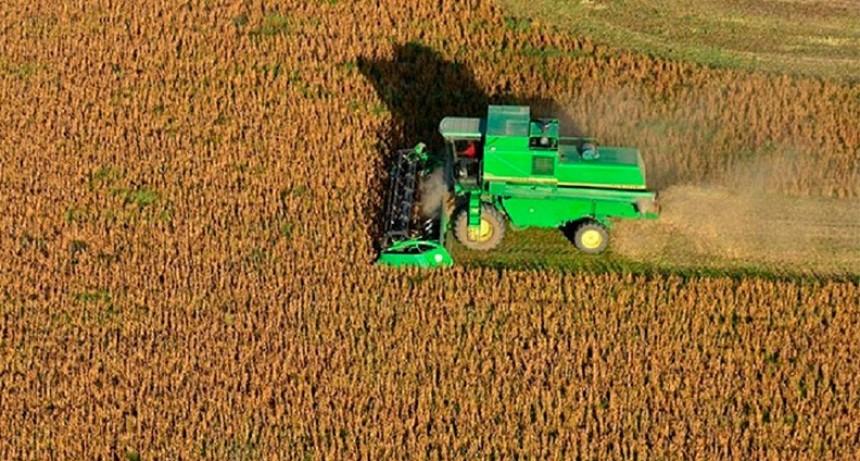 Índice FADA: El Estado se sigue llevando más del 60% de la renta agrícola
