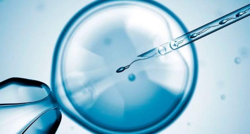 Buscan limitar a 10 años la conservación de embriones congelados