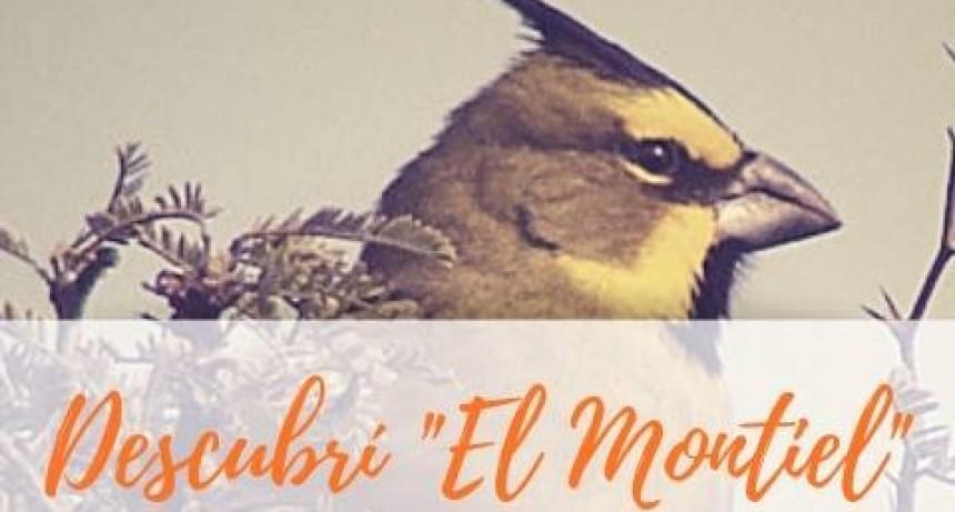 """EXCURSIÓN """"DESCUBRÍ EL MONTIEL"""""""
