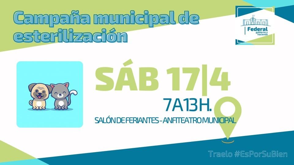 Programa Municipal de Esterilización Gratuita
