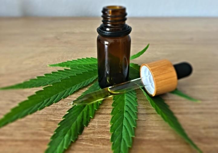 Diputados dio media sanción por unanimidad al proyecto de ley de acceso al cannabis con fines terapéuticos