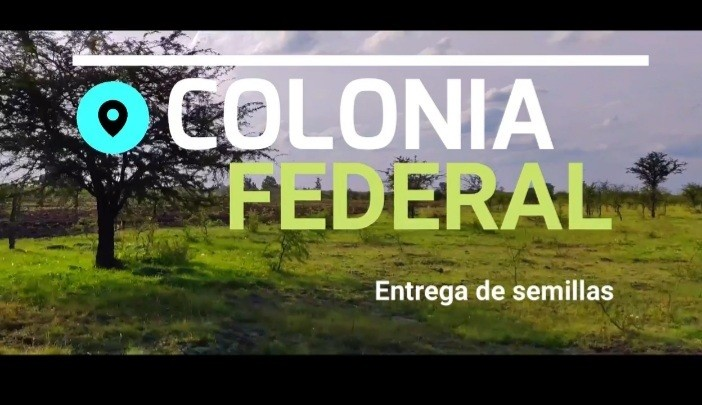 Entrega de semillas a productores de Colonia Federal