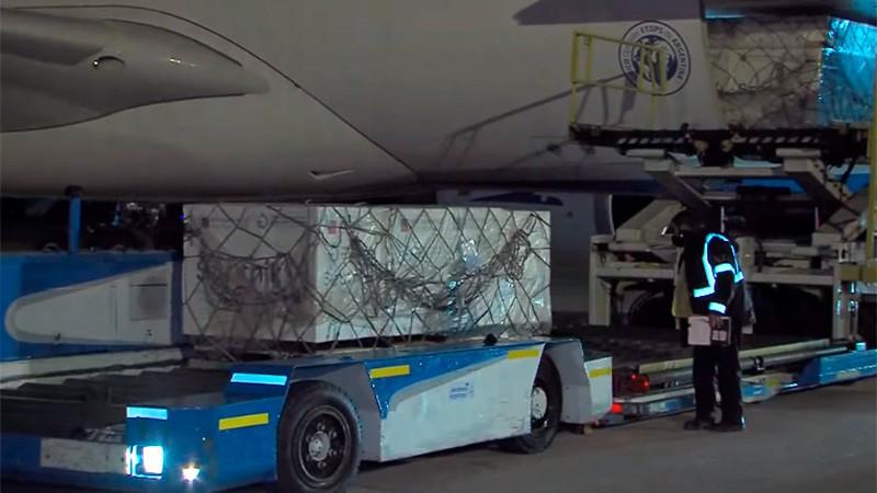 Llegó a Argentina un nuevo vuelo con 800 mil dosis de Sputnik V