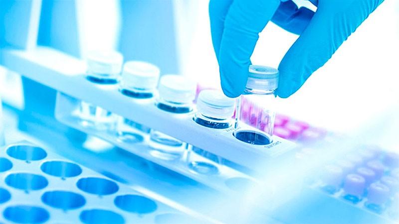 Una empresa argentina producirá a gran escala la proteína clave del coronavirus