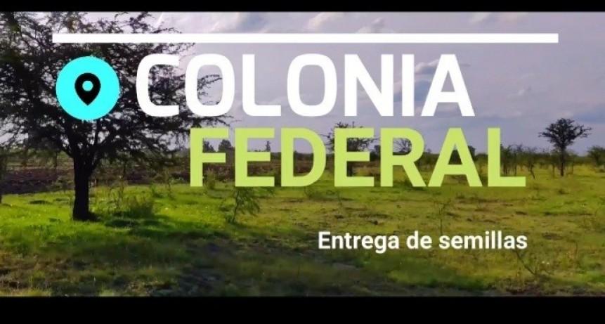 Entrega de semillas a productores de Colonia Federal
