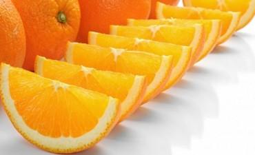 Inmunonutrición: cuáles son los alimentos que ayudan a fortalecer las defensas