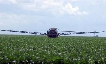 Guerra a las malezas: el aumento de los costos de control amenaza la renta agrícola