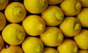 Para Macri estaba solucionado Nuevas trabas para el ingreso de los limones argentinos a Estados Unidos
