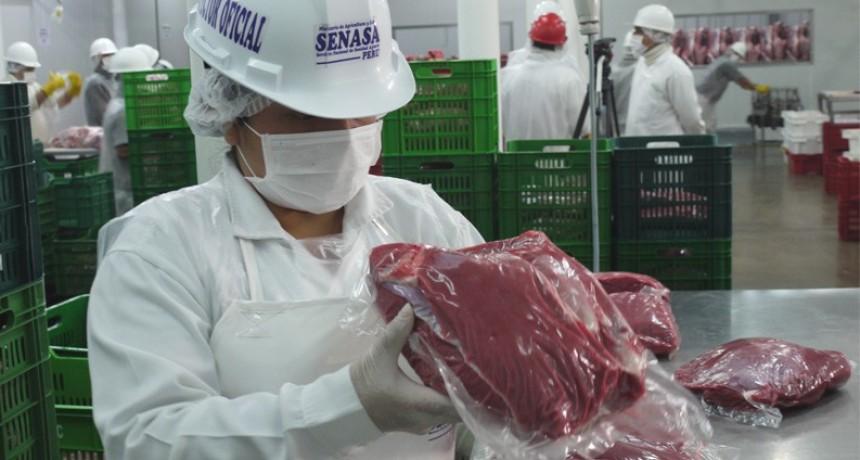 Denuncian que se autoriza salida de comestibles sin autorización del SENASA