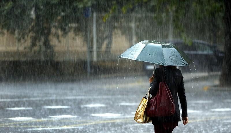 Datos de lluvia caídos en el Departamento