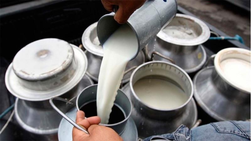 Regresa la venta de leche suelta y recuerdan las precauciones para su consumo