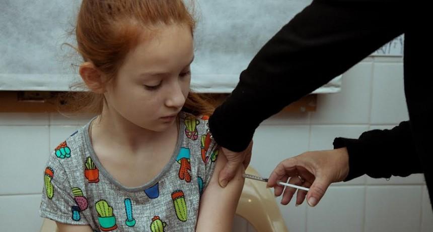 Comienza a normalizarse el stock de vacunas