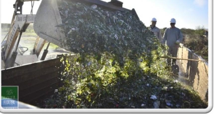 Reciclado de vidrio en la Planta de Tratamiento de Residuos