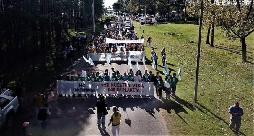 Uruguay autorizó la segunda planta de pastera de UPM