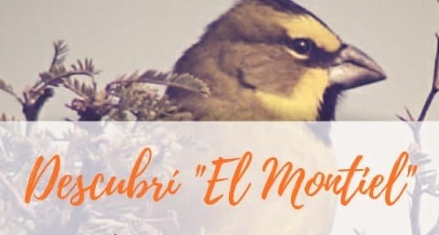"""EXCURSIÓN """"DESCUBRÍ EL MONTIEL"""" REPROGRAMADA"""