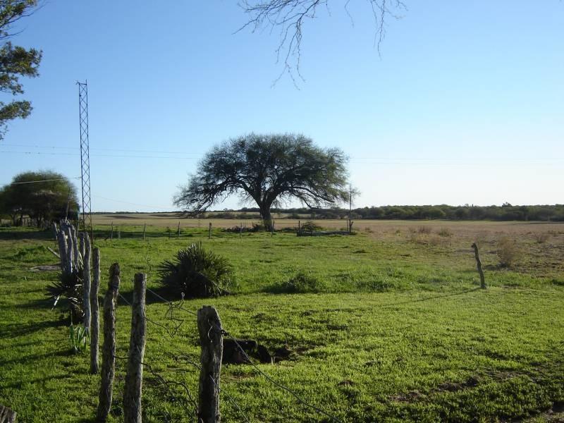 Fijaron los nuevos valores del Impuesto Inmobiliario Rural