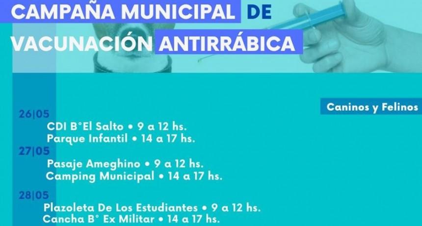 Campaña Municipal de vacunación Antirrábica gratuita