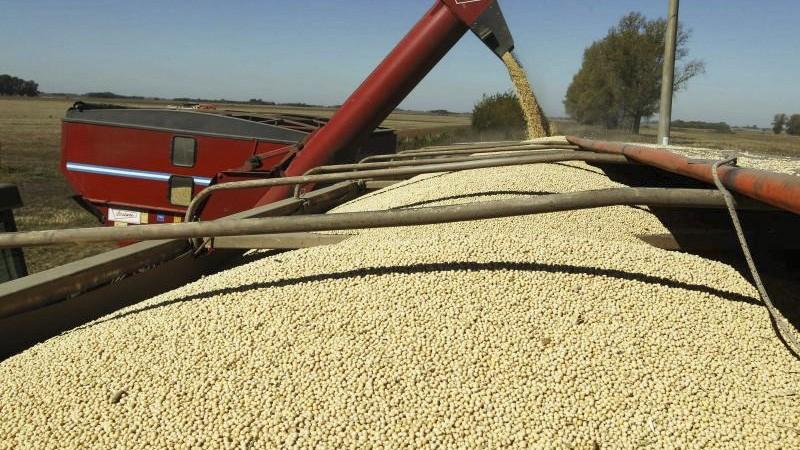 La soja sigue en alza y casi duplica su valor desde el inicio de la pandemia