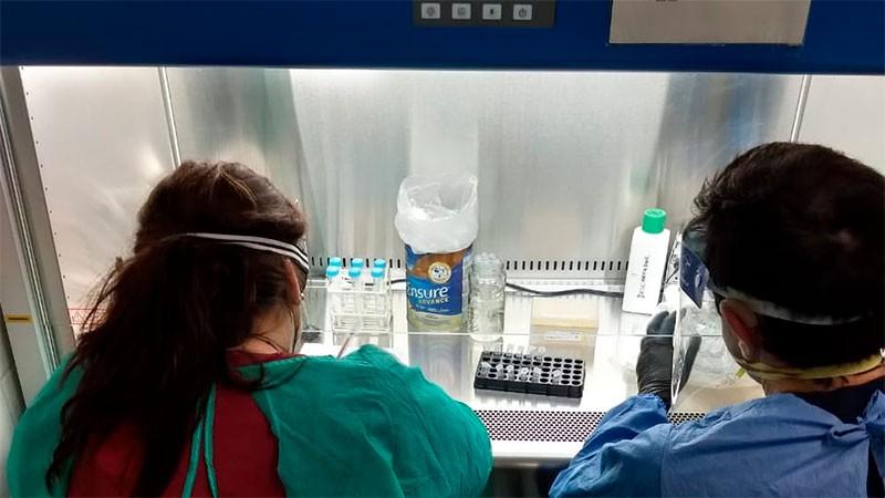 Coronavirus: detectaron las cepas de Reino Unido y Río de Janeiro en Concordia